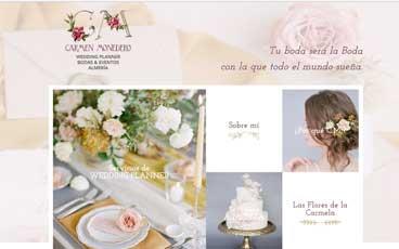 Web Carmen Monedero